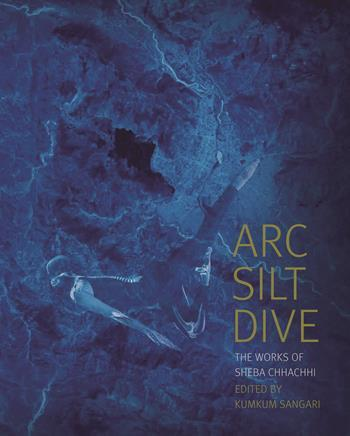 Arc Silt Dive